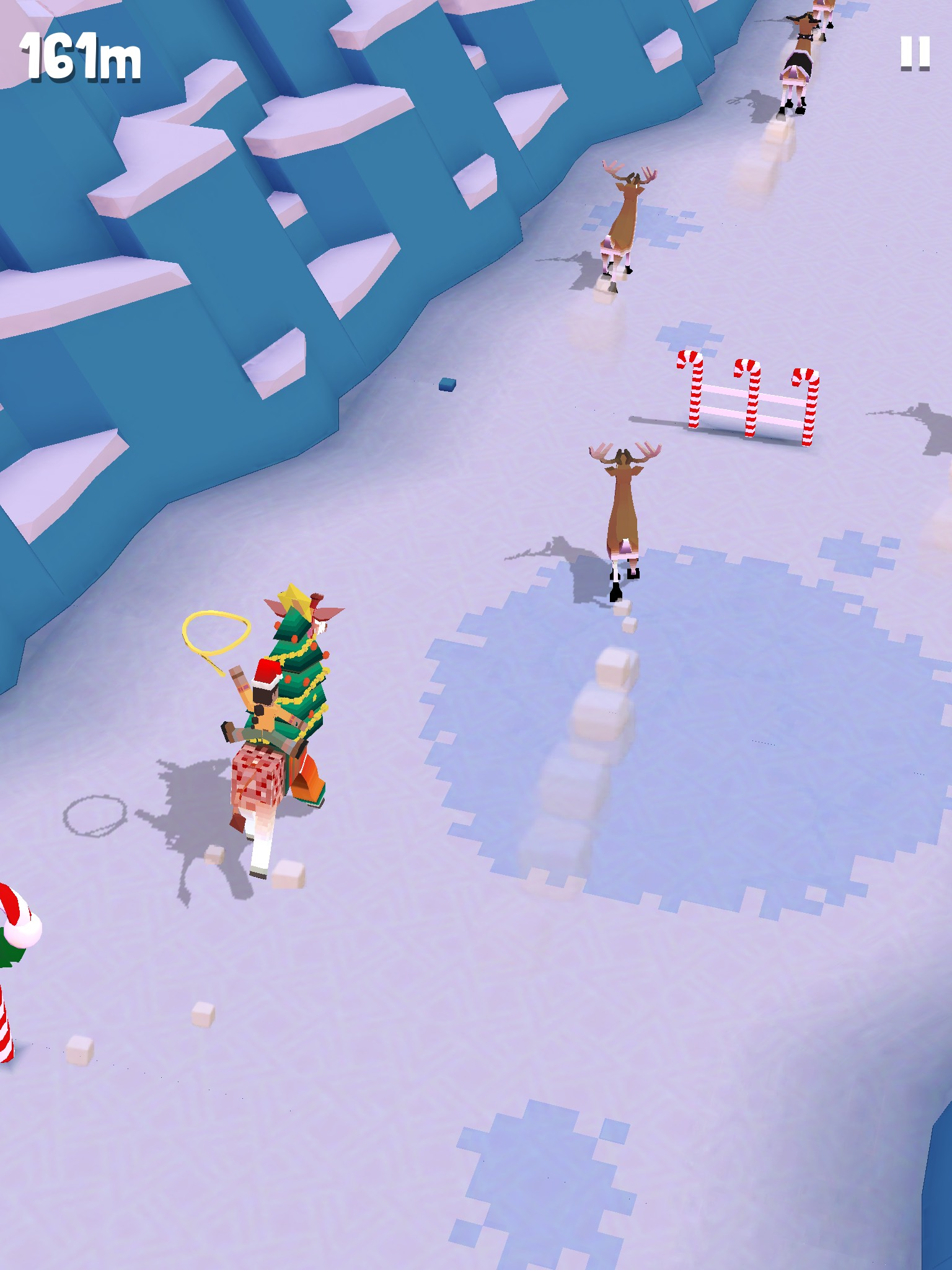 Christmas giraffe! 🎄🦒