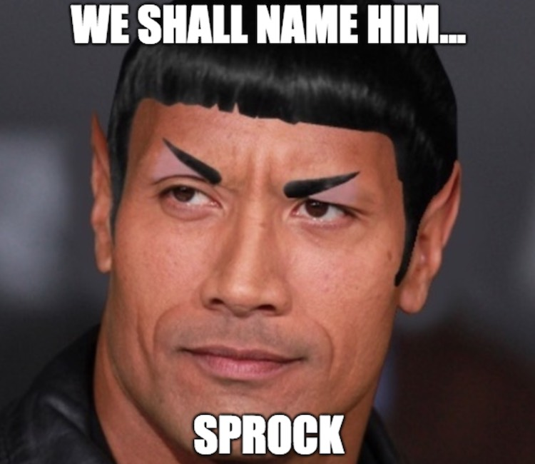 The rock and Spock if that are mixed up follow me