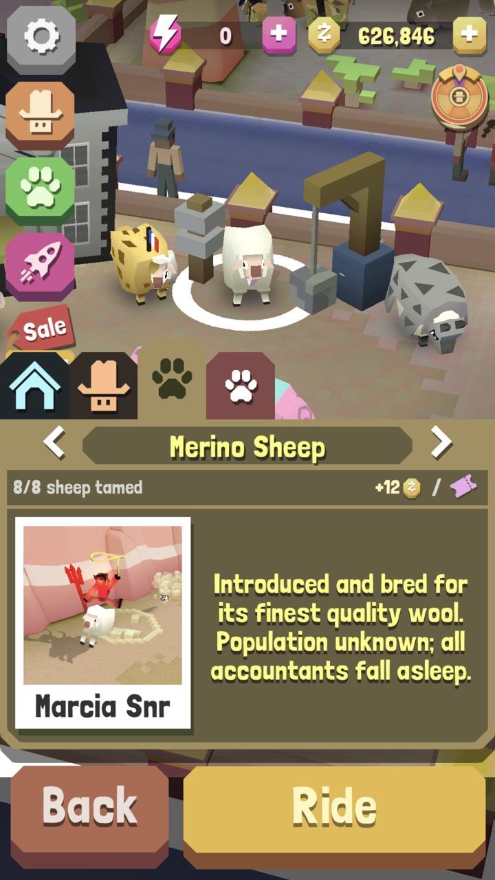 Species: Sheep