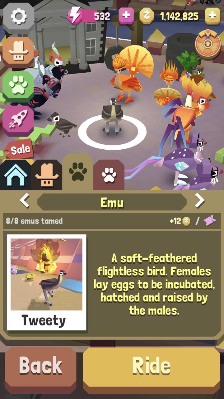 Species: Emu